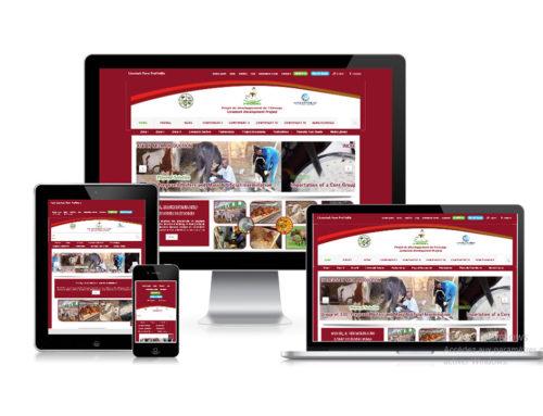 Site internet du PRODEL
